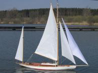 Albatros von Gerd Neumann